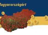 Virágos Magyarországért 2011